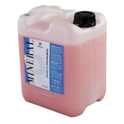 Шампунь профессиональный для окрашенных волос Polyvalent professional shampoo 10 kg